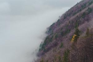 hillside-1149463_1920